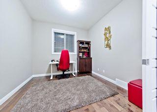 Photo 34: REDSTONE PA NE in Calgary: Redstone House for sale