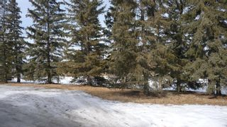 Photo 45: 2603 45 Street SW in Calgary: Glendale Detached for sale : MLS®# A1013600