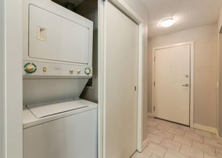 Photo 13: 158 35 Richard Court SW in Calgary: Lincoln Park Apartment for sale : MLS®# A1096468