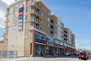 Photo 33: 315 3410 20 Street SW in Calgary: South Calgary Apartment for sale : MLS®# A1101709