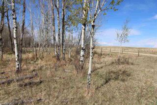 Photo 18: 57032 RR 50: Rural Lac Ste. Anne County Rural Land/Vacant Lot for sale : MLS®# E4244016