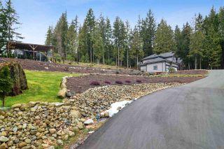 Photo 36: 12433 MCNUTT Road in Maple Ridge: Northeast House for sale : MLS®# R2547502