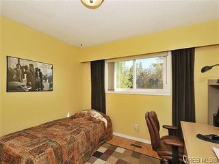 Photo 12: 995 Lucas Ave in VICTORIA: SE Lake Hill House for sale (Saanich East)  : MLS®# 639712