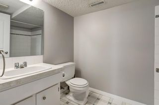 Photo 23: 450 19 Avenue NW in Calgary: Mount Pleasant Semi Detached for sale : MLS®# A1036618