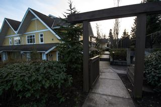 "Photo 28: 5 6878 SOUTHPOINT Drive in Burnaby: South Slope Townhouse for sale in ""CORTINA"" (Burnaby South)  : MLS®# R2143972"