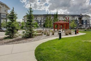 Photo 27: 2412 155 Skyview Ranch Way NE in Calgary: Skyview Ranch Apartment for sale : MLS®# A1120329