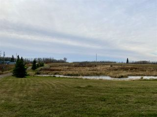 Photo 4: 49101 Range Road 233: Rural Leduc County Rural Land/Vacant Lot for sale : MLS®# E4219459