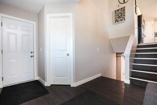 Photo 23: 17 Briarwood Avenue in Kleefeld: R16 Residential for sale : MLS®# 202111236