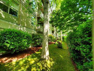 Photo 35: 405 3363 Glasgow Ave in : SE Quadra Condo for sale (Saanich East)  : MLS®# 876047