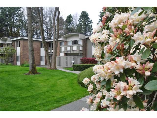 """Main Photo: 6 5565 OAK Street in Vancouver: Shaughnessy Condo for sale in """"SHAWNOAKS"""" (Vancouver West)  : MLS®# V946149"""
