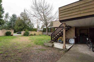Photo 19: 561 56TH STREET in Delta: Pebble Hill House for sale (Tsawwassen)  : MLS®# R2045239