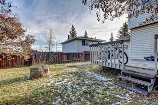 Photo 5: 7 PINEBROOK Place NE in Calgary: Pineridge Detached for sale : MLS®# C4221689