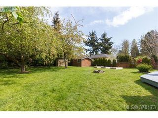 Photo 20: 580 OConnell Pl in VICTORIA: SW Glanford House for sale (Saanich West)  : MLS®# 759348