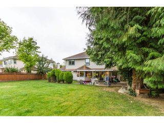 """Photo 19: 21849 44A Avenue in Langley: Murrayville House for sale in """"Upper Murrayville"""" : MLS®# R2098135"""