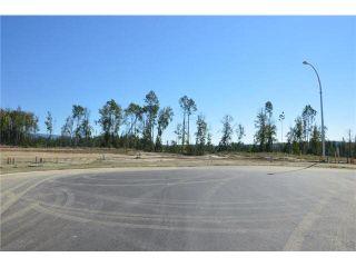 """Photo 7: LOT 7 BELL Place in Mackenzie: Mackenzie -Town Land for sale in """"BELL PLACE"""" (Mackenzie (Zone 69))  : MLS®# N227300"""