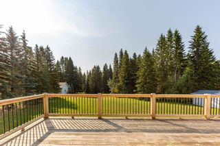 Photo 38: 121 62036 Twp 462: Rural Wetaskiwin County House for sale : MLS®# E4254421