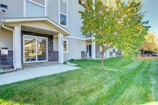 Photo 2: 205 7205 Valleyview Park SE in Calgary: Dover Apartment for sale : MLS®# A1152735