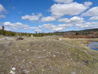 Photo 22: LOT 1 TUNKWA LAKE ROAD: LOGAN LAKE Land Only for sale (SOUTH WEST)  : MLS®# 139085