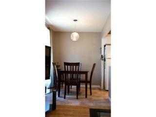 Photo 14: 11 Nolin Avenue in WINNIPEG: Fort Garry / Whyte Ridge / St Norbert Residential for sale (South Winnipeg)  : MLS®# 1215300