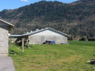 Photo 6: 1160 MARION Road in Abbotsford: Sumas Prairie Agri-Business for sale : MLS®# C8038422