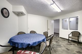Photo 22: 3225 6818 Pinecliff Grove NE in Calgary: Pineridge Apartment for sale : MLS®# A1053438