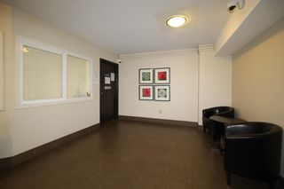 Photo 9: 405 1330 BURRARD Street in Vancouver: Downtown VW Condo for sale (Vancouver West)  : MLS®# R2612588