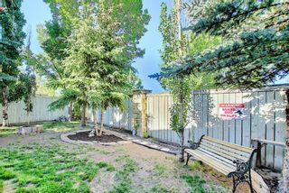 Photo 43: 131 Bridlewood Circle SW in Calgary: Bridlewood Detached for sale : MLS®# A1126092