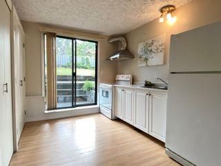 Photo 25: 4024 Cedar Hill Rd in : SE Cedar Hill House for sale (Saanich East)  : MLS®# 879755