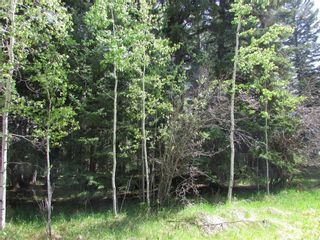 Photo 3: 127, 5241 TWP Rd 325A: Rural Mountain View County Land for sale : MLS®# C4299936