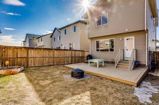 Photo 26: 191 Cranford Close in Calgary: Cranston Detached for sale : MLS®# A1085640