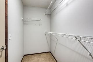 Photo 29: 303 Chapalina Terrace SE in Calgary: Chaparral Detached for sale : MLS®# A1113297