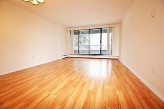 Photo 1: 505 6595 WILLINGDON AVENUE in Burnaby: Metrotown Condo for sale (Burnaby South)  : MLS®# R2539409