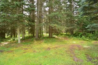 "Photo 19: 6793 KROEKER Road in Smithers: Smithers - Rural Manufactured Home for sale in ""Glacier View Estates"" (Smithers And Area (Zone 54))  : MLS®# R2495709"