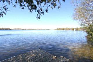 Photo 5: 45 North Taylor Road in Kawartha Lakes: Rural Eldon House (Bungalow-Raised) for sale : MLS®# X4825870