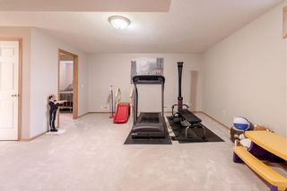 Photo 41: 278 COVENTRY Court NE in Calgary: Coventry Hills Detached for sale : MLS®# C4219338