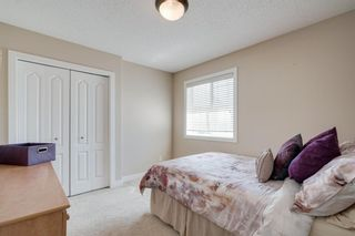Photo 34: 160 Brightonstone Gardens SE in Calgary: New Brighton Detached for sale : MLS®# A1009065