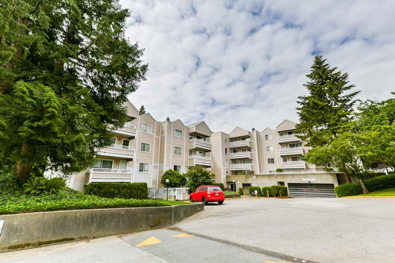 """Main Photo: 102 9644 134 Street in Surrey: Whalley Condo for sale in """"Parkwoods - Fir"""" (North Surrey)  : MLS®# R2270857"""