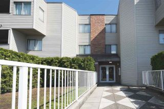 "Photo 4: 107 615 NORTH Road in Coquitlam: Coquitlam West Condo for sale in ""NORFOLK MANOR"" : MLS®# R2152631"