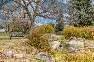 Photo 43: 272 Cannington Place SW in Calgary: Canyon Meadows Detached for sale : MLS®# A1152588