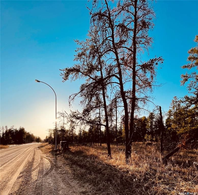 Main Photo: Over 1 acre lots in Hudson Bay: Lot/Land for sale : MLS®# SK850473