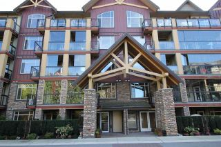"""Photo 1: 122 8288 207A Street in Langley: Willoughby Heights Condo for sale in """"YORKSON CREEK"""" : MLS®# R2212357"""