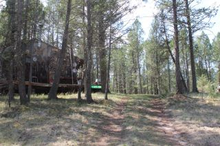 Photo 6: 1601 JOHNSTON ROAD in Invermere: House for sale : MLS®# 2459843