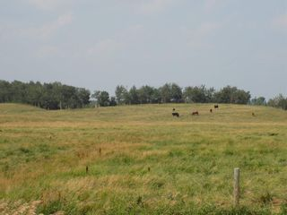 Photo 26: 50266 HWY 21: Rural Leduc County House for sale : MLS®# E4256893