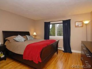 Photo 9: 843 Tulip Ave in VICTORIA: SW Marigold House for sale (Saanich West)  : MLS®# 554188