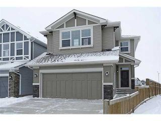 Photo 1: 2052 BRIGHTONCREST Green SE in Calgary: New Brighton Residential Detached Single Family for sale : MLS®# C3651648