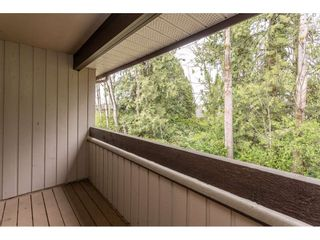 Photo 24: 3 4860 207 STREET in Langley: Langley City Townhouse for sale : MLS®# R2558890