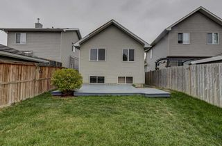 Photo 43: 286 Cranberry Close SE in Calgary: Cranston Detached for sale : MLS®# A1143993