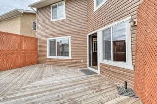 Photo 46: 143 Chapman Way SE in Calgary: Chaparral Detached for sale : MLS®# A1116023