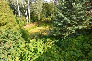 Photo 31: 2828 PTARMIGAN Road in Smithers: Smithers - Rural Manufactured Home for sale (Smithers And Area (Zone 54))  : MLS®# R2615113