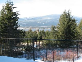 Photo 11: 1563 Kyte Rd in Sorretno: Sorrento House for sale (Shuswap)  : MLS®# 10175854